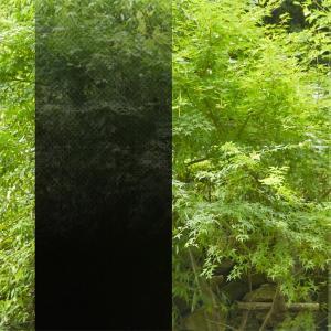 ガラスフィルム 窓 黒 ブラック グラデーション|usagi-shop