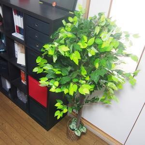 造木 観葉植物 人工樹木 偽物 リアル 造花 ...の詳細画像2