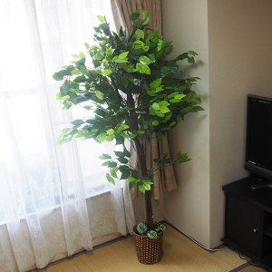 造木 観葉植物 人工樹木 偽物 リアル 造花 ...の詳細画像3