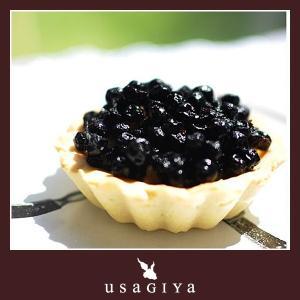 ワイルドブルーベリー 野生種 アメリカ産 ドライフルーツ