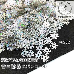 スパンコール 雪の結晶 オーロラ レジン ネイルに スノーフレーク 冬 パーツ 約5グラム/800枚目安|usaginosozaiya