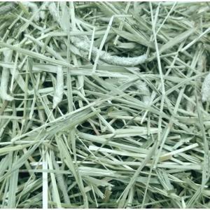 アメリカンチモシー1番刈り牧草 500g|usagiya