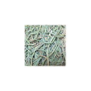 アメリカンチモシー 3番刈り 500g×2個 シングルプレス牧草|usagiya