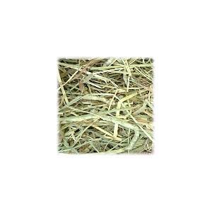 北海道チモシー1番刈り牧草 500g × 2|usagiya