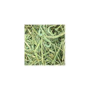 お試し アメリカンチモシー1番刈り  ダブルプレス牧草 100g|usagiya
