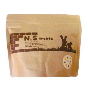 N.S treats パパイヤ 50g|usagiya