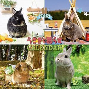 うさぎと暮らすカレンダー2018 usagiya
