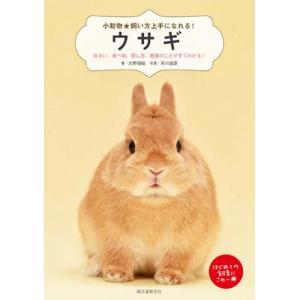 ザ・ウサギ usagiya