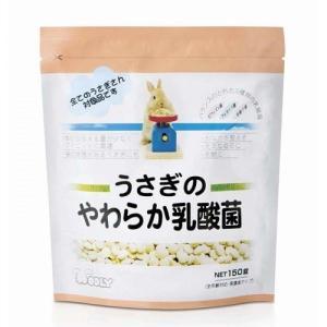 WOOLY うさぎのやわらか乳酸菌|usagiya