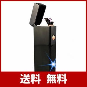 USBライター プラズマライター 電子ライター ダブルアークライター USB 充電式 ターボ ライター ガス オイル 不要 防災グッズ 日本国内全数検 usefulforyou