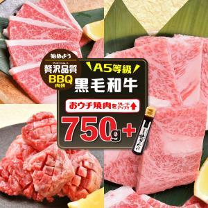 焼肉 牛肉 訳あり お中元 焼肉セット 福袋 黒毛和牛セット2人前(梅)750g カルビ/ロース/ ...