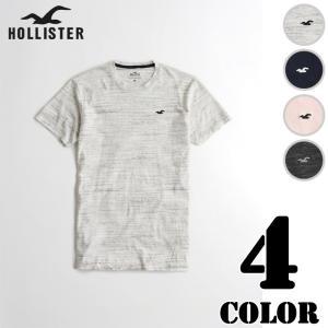 ホリスター メンズ Tシャツ ロゴT マストハブ ロングライ...
