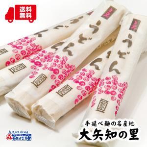 乾麺 手延べ うどん 5束セット / 10人前|utaandon
