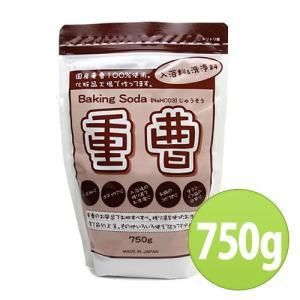 地の塩社 ちのしお重曹 750g (入浴料・洗浄料)