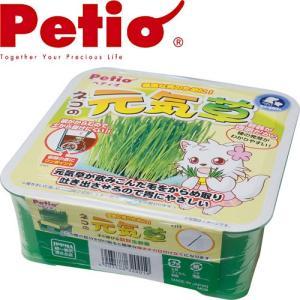 ペティオ ネコの元気草 1個 (猫用品/ねこ ネコ/ペット用品)|utopia-y
