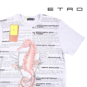 【L】 ETRO エトロ Uネック半袖Tシャツ メンズ 春夏 グレー 灰色 並行輸入品 トップス|utsubostock