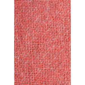 ROSI COLLECTION ストール メンズ 秋冬 ピンク カシミヤ100% ロージコレクション 並行輸入品|utsubostock|05