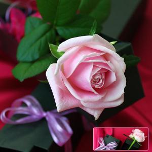メッセージフラワー 母の日 ギフトバラ 薔薇 花にメッセージ プリ花 お花 贈り物 花 花に印字 アートフラワー 記念日 プレゼント バレンタイン|utsunomiyahonpo