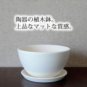 白い陶器の植木鉢(つやなし、マットタイプ) / ボールタイプ|utyu|07