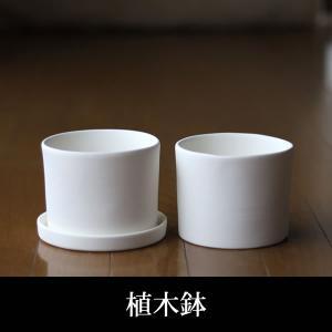 白い陶器の植木鉢(つやなし、マットタイプ) / ずんどうタイプ|utyu
