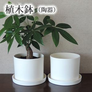 白い陶器の植木鉢(つやなし、マットタイプ) / ずんどうタイプ|utyu|05