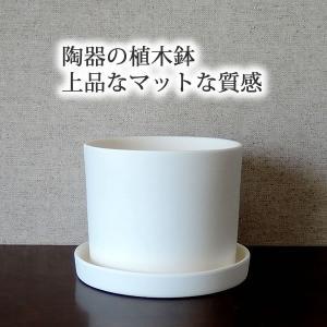 白い陶器の植木鉢(つやなし、マットタイプ) / ずんどうタイプ|utyu|06