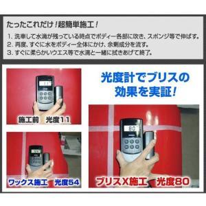 ブリスX コーティング剤 高密度ガラス繊維系ポリマー ブリスエックス 280ml|uushop2|02