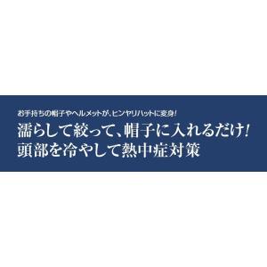 ヘッドクール(2枚組)|uushop2|02
