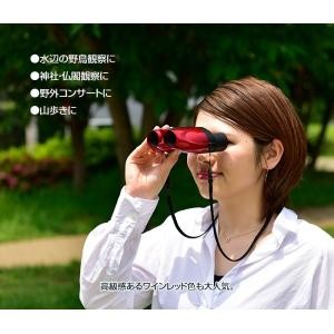 ケンコー・コンパクト50倍双眼鏡 Kenko ceres GIII|uushop2|04