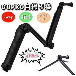 様々なアクションカメラに対応  GoPro ゴープロ ( hero1 / hero2 / hero3...