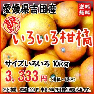 愛媛 宇和島 吉田産 訳あり 【 いろいろ柑橘詰合せ 】 1...