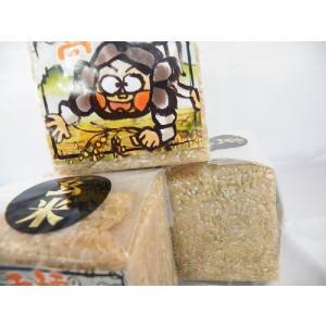 ひのひかり 玄米 高千穂産 (2合 1人前)|uzumeya