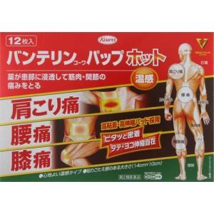 (第2類医薬品) 興和 バンテリンコーワパップホット 12枚 /バンテリンコーワ 湿布