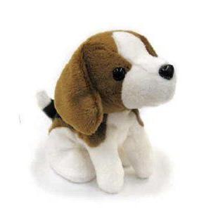 Mini Beagle 6