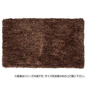 マイクロシャギーマット カペリ 約50×80cm BR 270025008|value