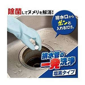 排水管の一発洗浄 塩素タイプ /排水管洗浄 排水管掃除 洗剤/