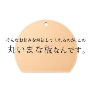 食洗機対応 丸いまな板 耐熱エラストマー /抗菌/ value 04