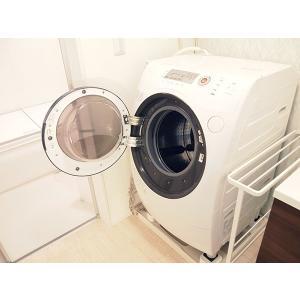 洗濯槽シリカでカラッと110番 (FP-970)/洗濯槽のカビ・雑菌の繁殖を防止/|value|04