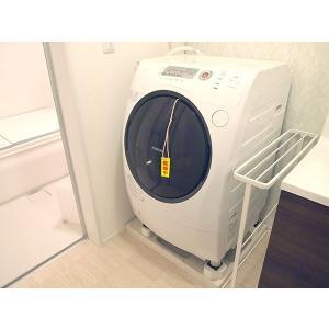 洗濯槽シリカでカラッと110番 (FP-970)/洗濯槽のカビ・雑菌の繁殖を防止/|value|06