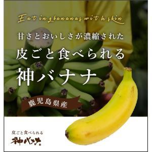 神バナナ 皮ごと食べられる国産無農薬バナナ 3本セット