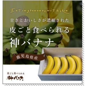 神バナナ 皮ごと食べられる国産無農薬バナナ 5本セット