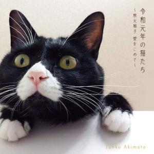 令和元年の猫たち〜秋元順子 愛をこめて〜 / 秋元順子 (CD) (発売後取り寄せ) vanda