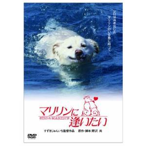 マリリンに逢いたい / 安田成美 (DVD)|vanda
