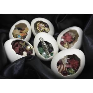 泥方陽菜 蒐集卵|vanilla-gallery