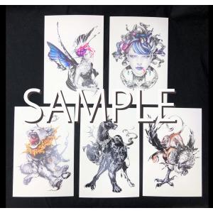 猫将軍ポストカード5種セット(KERBEROS)|vanilla-gallery