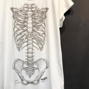骨格Tシャツ/女性体幹骨格(レディース)|vanilla-gallery