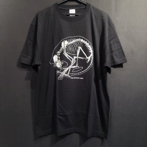 骨格Tシャツ/丸まり猫(透明)|vanilla-gallery