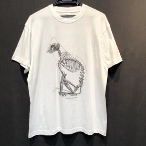 骨格Tシャツ/座り猫(透明)|vanilla-gallery