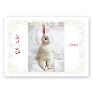 神宮字光HIKARU JINGUJI『うさUSA』(サイン入りSigned)|vanilla-gallery