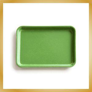 Camtray Sサイズ ライトグリーン トレー|vanilladesign